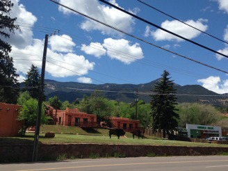 Buffalo signs in Manitou Springs