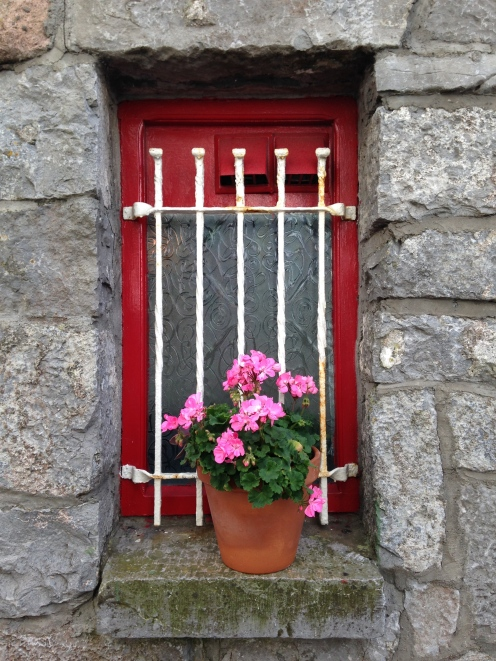 Red window with pink flowers in Galway Ireland