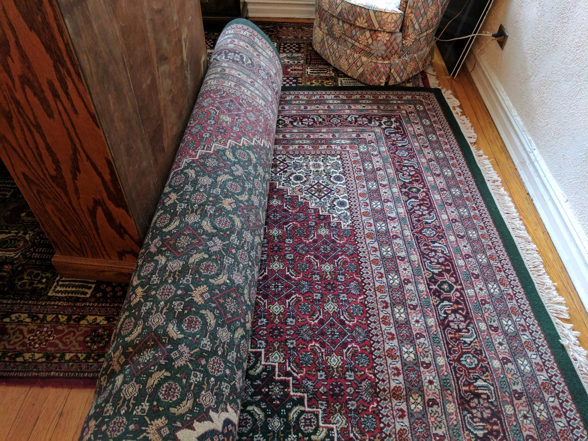 Indian Bijar rug green red
