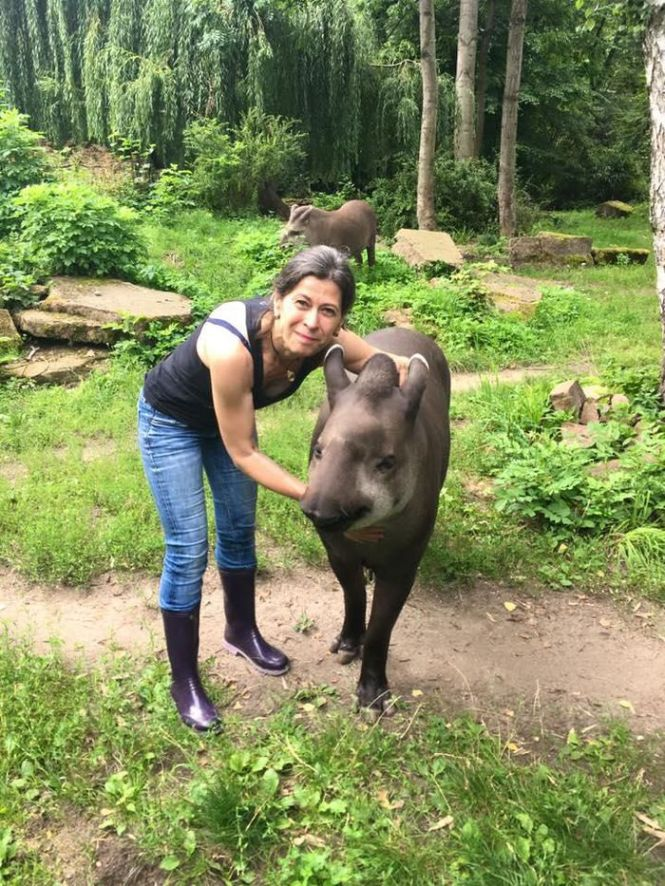 Woman standing with tapir animal