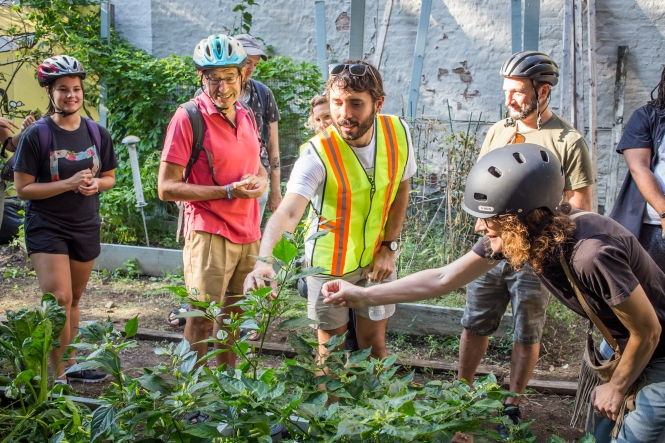 Happy people in bike helmets looking at plants